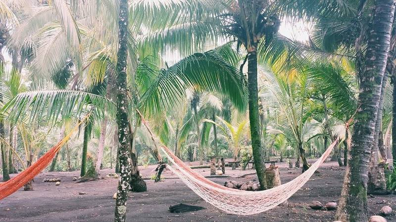 located where  the jungle meets the beach